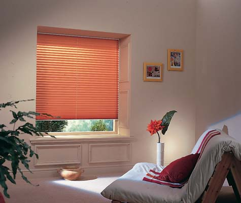 Pleated Blinds 2